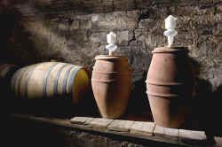 Wine-making in terracotta barriques and amphorae